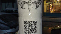 Cicada leaves a physical clue in the real world